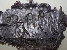 water fossil, detail, 2008