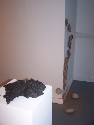 installation view 18, their specific reality 2010