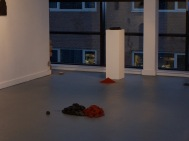 installation view 19, their specific reality 2010