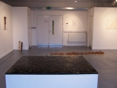 installation view 3, their specific reality 010