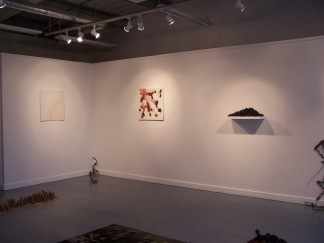 installation view 6, their specific reality 2010