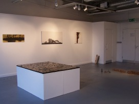 installation view 8, their specific reality 2010