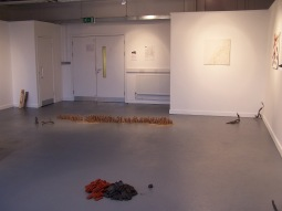 installation view 9, their specific reality 2010