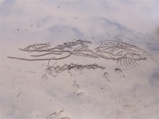 sand drawing, 2007